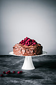 Chocolate raspberry cake with coconut milk chocolate ganache