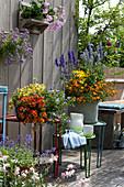 Bunt bepflanzte Sommerterrasse