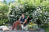 Sitzplatz auf Kiesterrasse vor Multiflora - Rose