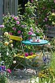 Kleine Sitzecke neben Rose 'Gertrude Jekyll'