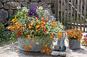 Alte Zinkwanne bunt bepflanzt mit Balkonblumen