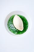 Coconut ice cream in kiwi soup