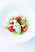Tarragon ice cream on fennel sauce and strawberries
