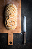 Selfmade bread on a wooden planl with a bread knife and a dark backdrop