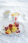 Coconut and apple cakes with raspberries and raspberry sauce