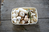 Fresh white and brown mushrooms, and oyster mushrooms