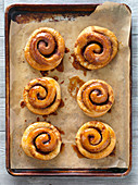 Cinnamon buns on a baking tray (seen from above)