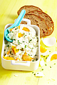 Egg salad with cucumber and chives served with sliced tomato bread