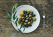 A plate of Mediterranean olives in olive oil with a branch of olive tree