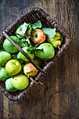 Garden pears and an apple in a basket
