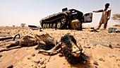Abandoned tank and dead animal, Sahara Desert