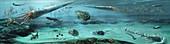 Ordovician sea, illustration