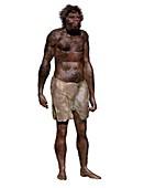 Homo sapiens (Jebel Irhoud), illustration