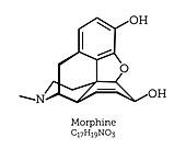 Morphine opioid molecule