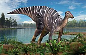 Hadrosaurus dinosaur, illustration