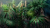 Jurassic forest plants, illustration