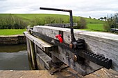 Lock gate paddle gear