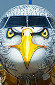 Aircraft eagle face