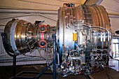 Trent 900 aircraft engine
