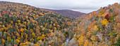 Autumn colours in the Catskills, USA