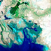 Northern Persian Gulf, satellite image