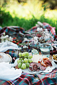 Delicious food for picnic lying on checkered blanket on sunny day