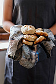 Grilled Wheat rolls