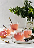 Freshly made grapefruit mocktail drink with rosemary