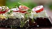 Bread topped with cream cheese, tomatoes and cress