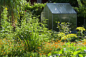 Naturgarten mit Gewächshaus