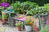 Bank am gemauerten Hochbeet mit Gemüse