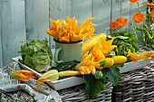Frisch geerntete Zucchini,  Zucchiniblüten und Salat