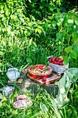 Erdbeer-Rhabarber-Pie auf Kiste im sommerlichen Garten