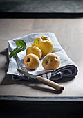 Quinces on a tea towel with a fruit knife