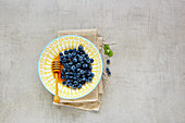Fresh Wild blueberry in bowl with honey