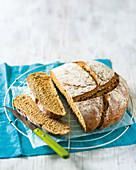 Sweet potato rye bread