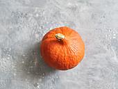 A Hokkaido pumpkin on a grey stone surface