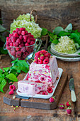 Raspberry and pistachio ice cream cake