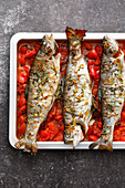 Oven-roasted rosemary trout on tomatoes (low carb)