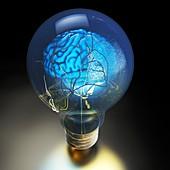 Brain power and light bulb, conceptual image