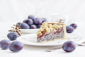 Autumnal damson and poppyseed quark cake