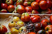 Frische bunte Tomaten auf einem Stadtmarkt in Frankreich