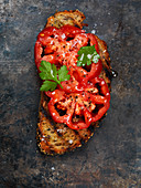 Toast topped with tomatoes