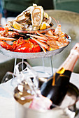 Fresh sea food on a plate served with champagne