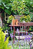 Topf-Arrangement mit Sommerblumen auf dem Tisch