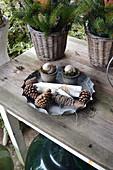 Zapfen, Kerzen, Schnur und Töpfchen mit Schneckenhäusern in Backform