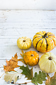 Various pumkins on a white background