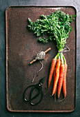 Bunch of fresh carrots in dark metallic background