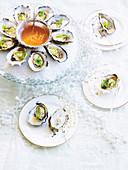 Austern mit Chili und Ingwer