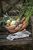 A wire basket with tuber vegetables (celery, kohlrabi, sweet potato, beetroot, carrots, potatoes)